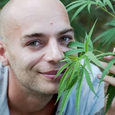 El Instituto Nacional del Cáncer admite que la Marihuana mata células cancerígenas