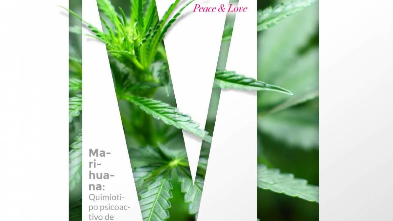 Diccionario del Cannabis Sativa L