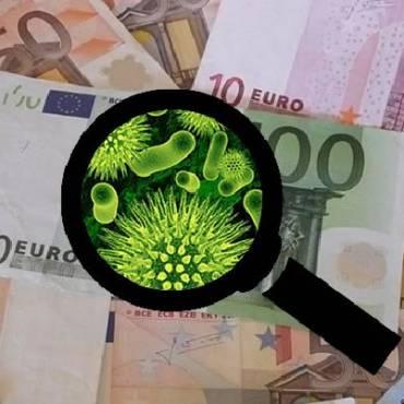 Bacterias de genitales las más frecuentes en los billetes