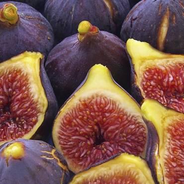 ¿Sabías que los higos no son una fruta? Son una flor y además tienen insectos muertos dentro